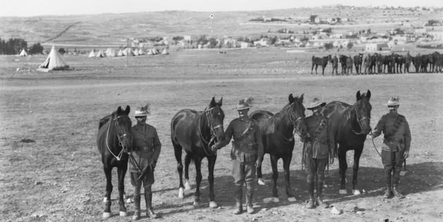 Birbeck's Horses