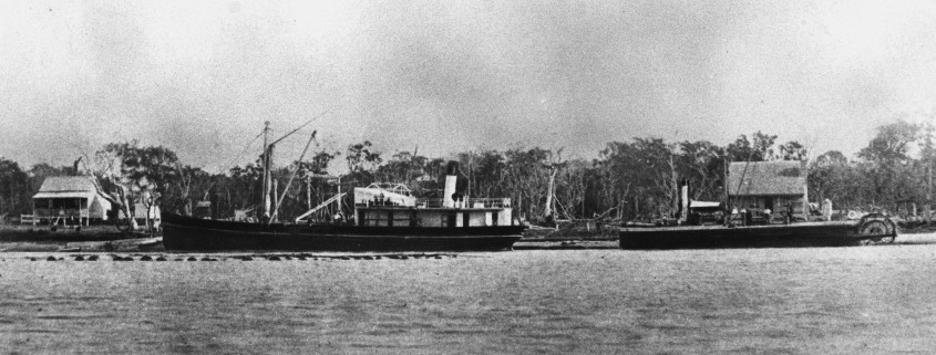 The Tarshaw (left) and the Tadorna Rahjah (right) berthed at Pettigrew's Wharf at Maroochydore in 1882. SLQ image 44255.